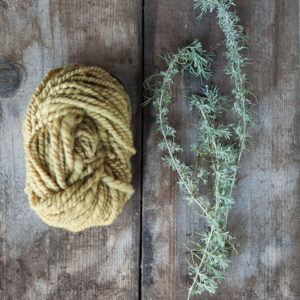 Natural dyes with Rebecca Burgess (photo by Paige Green)